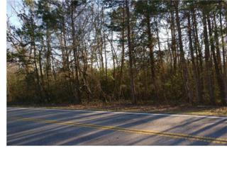 8081 Mud Creek Road, Alto, GA 30510 (MLS #5798035) :: North Atlanta Home Team