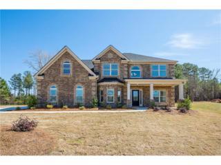 1508 Everson Walk, Hampton, GA 30228 (MLS #5802466) :: North Atlanta Home Team