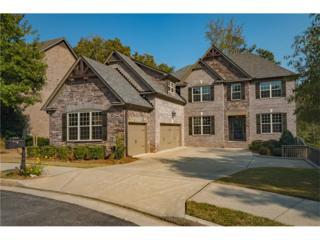 205 Stonewyck Place, Roswell, GA 30076 (MLS #5772785) :: North Atlanta Home Team