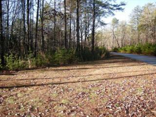 0 Twin Fawns Trail, Dahlonega, GA 30533 (MLS #4319070) :: North Atlanta Home Team