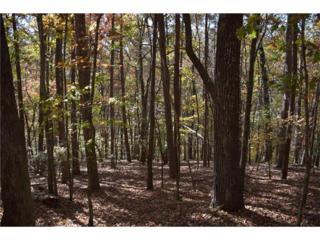 84 Pine Trail, Dahlonega, GA 30533 (MLS #5335878) :: North Atlanta Home Team