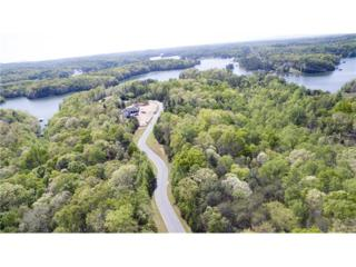 5949 Watermark Cove, Gainesville, GA 30506 (MLS #5664358) :: North Atlanta Home Team