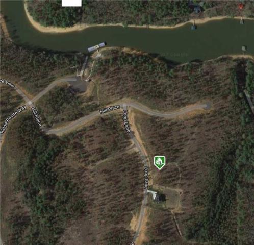 0 Loop Lane, Blairsville, GA 30512 (MLS #6106549) :: North Atlanta Home Team