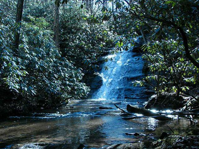 000 Falls Trail, Jasper, GA 30143 (MLS #4223279) :: RE/MAX Paramount Properties