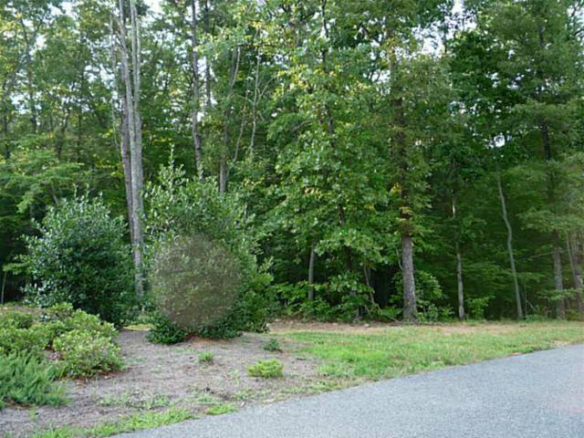 Lot A Twin Fawns Trail, Dahlonega, GA 30533 (MLS #5075724) :: North Atlanta Home Team