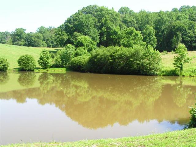 4 Quiet Waters, Dahlonega, GA 30533 (MLS #5551923) :: North Atlanta Home Team