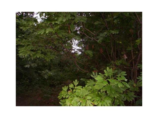 803 Chestnut Hill Road, Marietta, GA 30064 (MLS #5586771) :: The Bolt Group