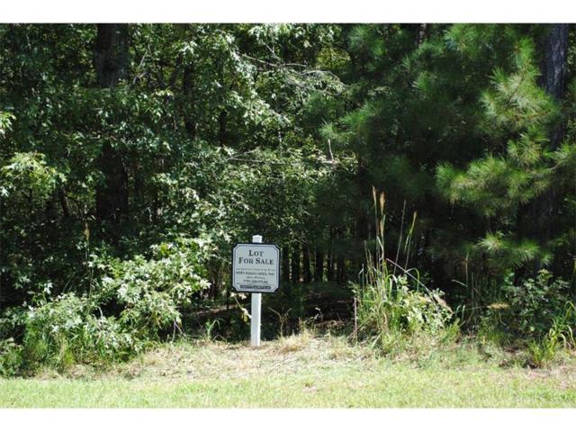 1381 Grayson Pointe Drive, Buckhead, GA 30625 (MLS #5595815) :: North Atlanta Home Team