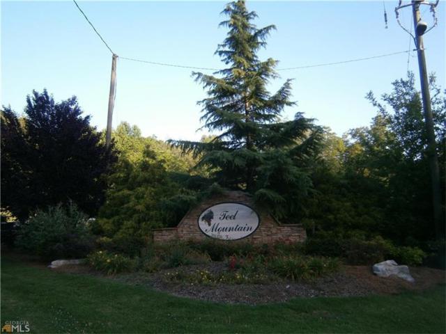 0 Teel Mountain Way, Cleveland, GA 30528 (MLS #5669100) :: North Atlanta Home Team