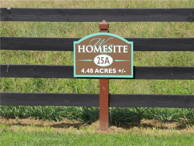 145 Woodhaven Lane, Ball Ground, GA 30107 (MLS #5673413) :: North Atlanta Home Team