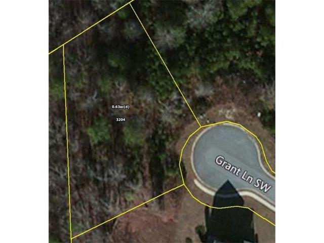 3204 Grant Lane SW, Conyers, GA 30094 (MLS #5692064) :: The Cowan Connection Team