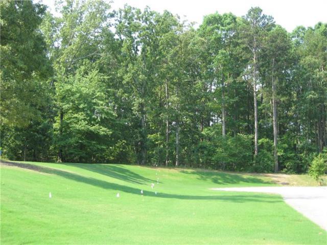 48 Branson Mill Drive NW, Cartersville, GA 30120 (MLS #5727285) :: North Atlanta Home Team