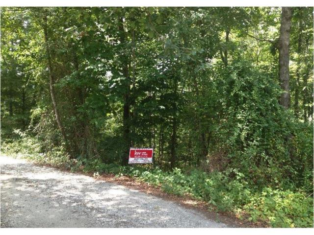 0 Sleepy River Drive, Demorest, GA 30535 (MLS #5731369) :: North Atlanta Home Team