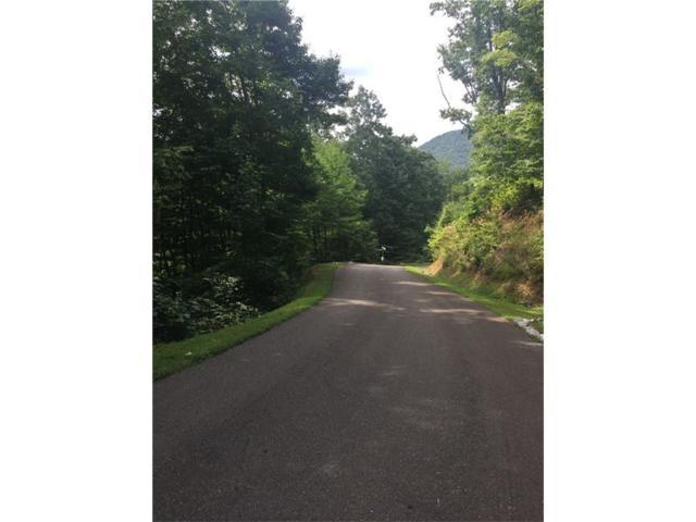 16 Wilderness, East Ellijay, GA 30540 (MLS #5744108) :: North Atlanta Home Team