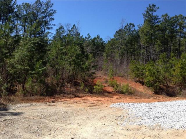 9030 Amity Drive, Winston, GA 30187 (MLS #5751916) :: North Atlanta Home Team