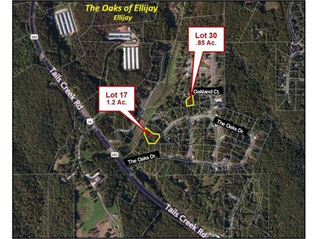 0 The Oaks Drive, Ellijay, GA 30540 (MLS #5770095) :: North Atlanta Home Team