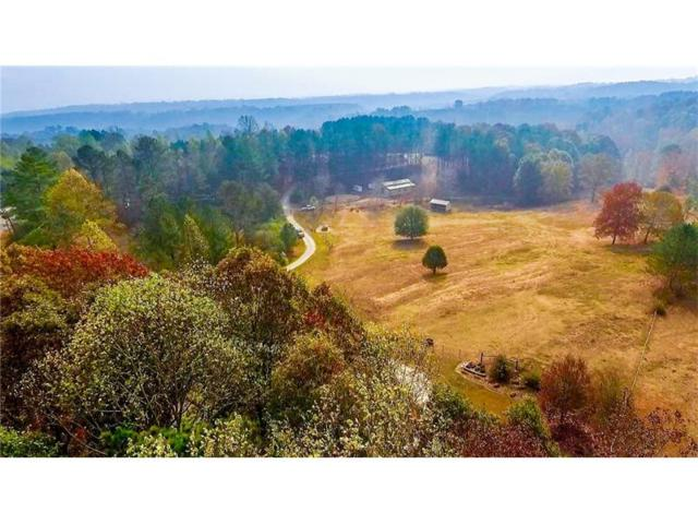 1991 Big Ridge Road, Talking Rock, GA 30175 (MLS #5777863) :: North Atlanta Home Team
