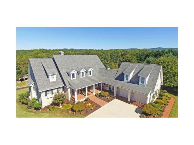 808 Annandale Drive, Clarkesville, GA 30523 (MLS #5779455) :: North Atlanta Home Team
