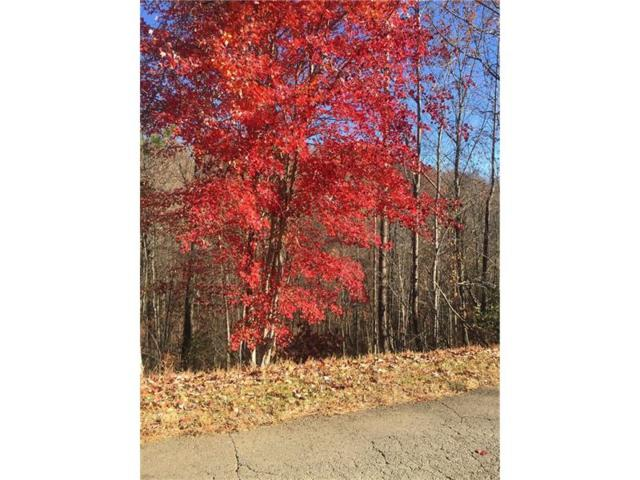 Lot102 Hunters Ridge Road, Jasper, GA 30143 (MLS #5779850) :: North Atlanta Home Team
