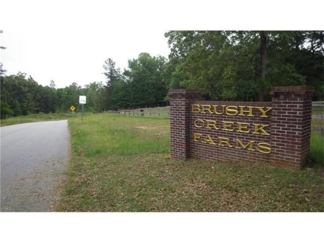 12 Brushy Creek Lane, Jackson, GA 30233 (MLS #5780788) :: North Atlanta Home Team