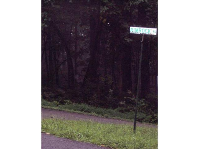LOT 56 Rimrock Road, Jasper, GA 30143 (MLS #5797816) :: North Atlanta Home Team