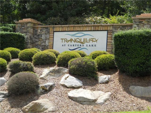 Lot 22 Harris Creek Drive, Ellijay, GA 30540 (MLS #5802340) :: North Atlanta Home Team