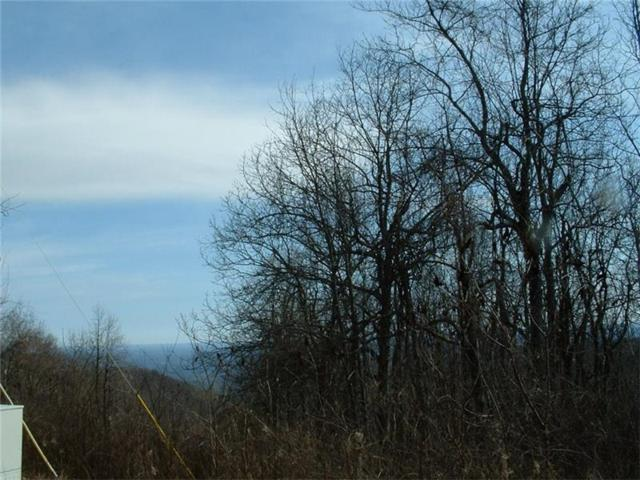 TR 5 Monument Road, Jasper, GA 30143 (MLS #5805610) :: North Atlanta Home Team
