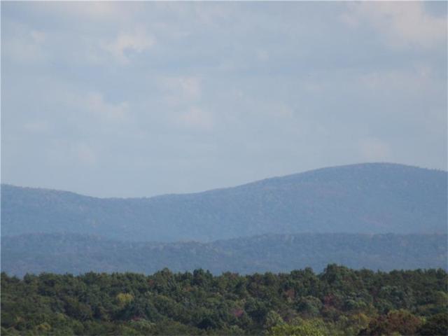 Lot194 Andes Ridge, Ellijay, GA 30540 (MLS #5818819) :: North Atlanta Home Team