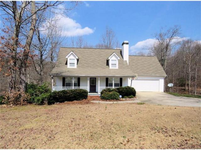 158 Hidden Cove Road, Dahlonega, GA 30533 (MLS #5822083) :: North Atlanta Home Team