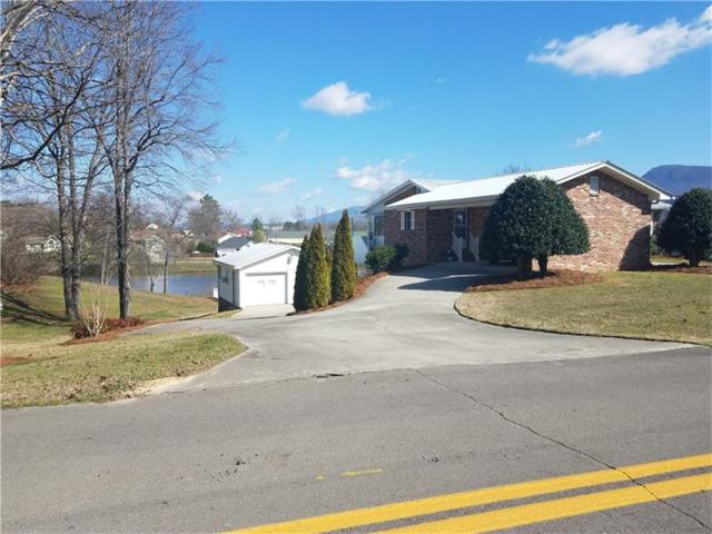 207 Lake View Drive, Chatsworth, GA 30705 (MLS #5822608) :: North Atlanta Home Team