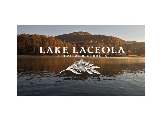 lot150 S Laceola Road, Cleveland, GA 30528 (MLS #5824273) :: North Atlanta Home Team