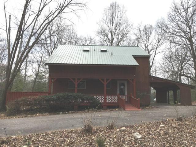 43 Praise The Lord Lane, Blairsville, GA 30512 (MLS #5840839) :: North Atlanta Home Team