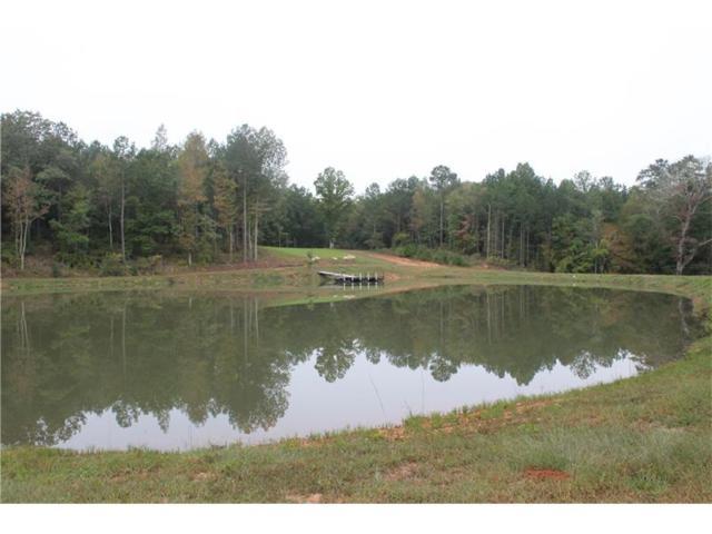 2000 Lick Skillet Road, Greensboro, GA 30642 (MLS #5843104) :: North Atlanta Home Team