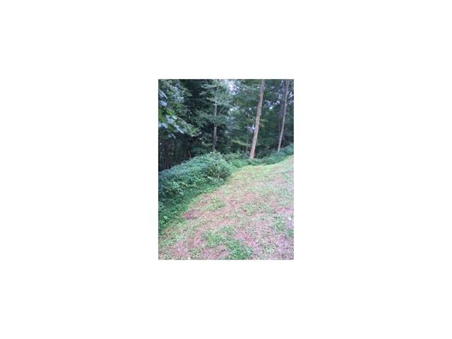 103 A Moorewood Circle, Other-North Carolina, GA 28741 (MLS #5843150) :: The Bolt Group