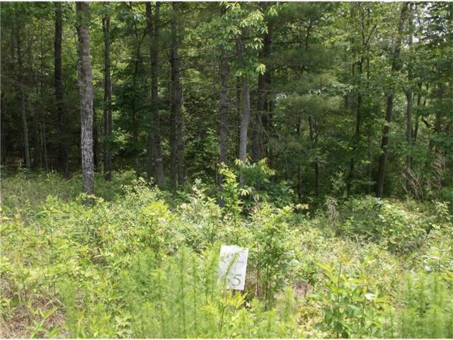 Lot 65 Nathanal, Blairsville, GA 30512 (MLS #5857775) :: The Bolt Group