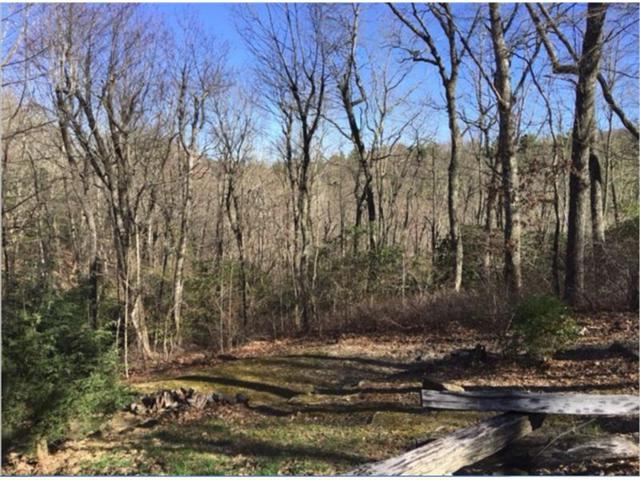 0 W Sugar Bush, Sky Valley, GA 30537 (MLS #5858074) :: The Bolt Group