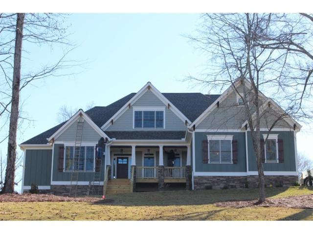 151 Chestnut Oak Lane, Dawsonville, GA 30534 (MLS #5859021) :: North Atlanta Home Team
