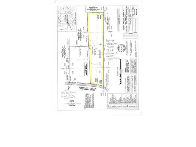 000 Conns Creek Road, Ball Ground, GA 30107 (MLS #5859201) :: Path & Post Real Estate