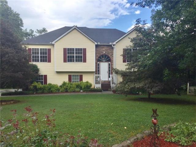 340 Allatoona Shores Drive, Canton, GA 30114 (MLS #5865534) :: North Atlanta Home Team