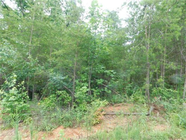 6.15 Chestatee River Estates, Dahlonega, GA 30533 (MLS #5867744) :: North Atlanta Home Team