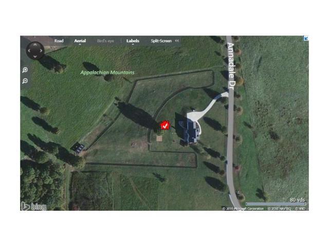 615 Annandale Drive, Clarkesville, GA 30523 (MLS #5868832) :: RE/MAX Paramount Properties
