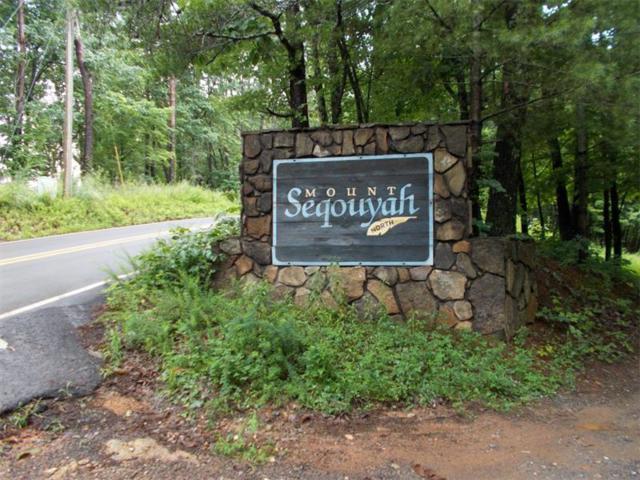 0 Mount Sequoyah Road, Jasper, GA 30143 (MLS #5870585) :: North Atlanta Home Team