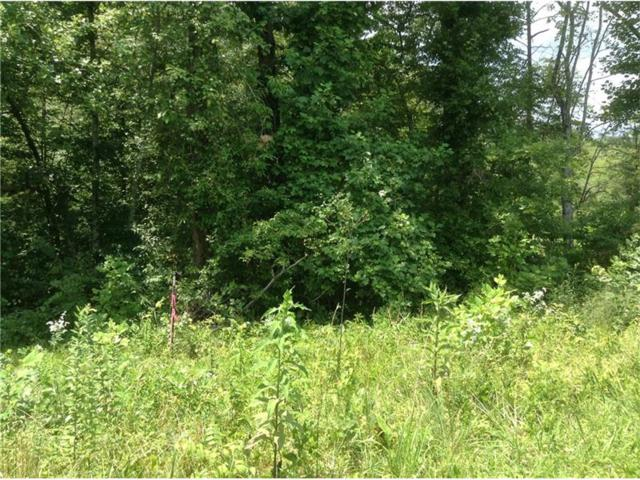 Lot 1 Humphrey Mill Road, Mineral Bluff, GA 30559 (MLS #5885471) :: North Atlanta Home Team