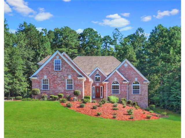 1413 Swiftwater Circle, Mcdonough, GA 30252 (MLS #5885677) :: North Atlanta Home Team