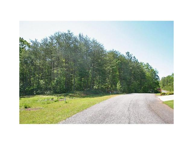 56ac Rider Road, Dawsonville, GA 30534 (MLS #5891109) :: The North Georgia Group