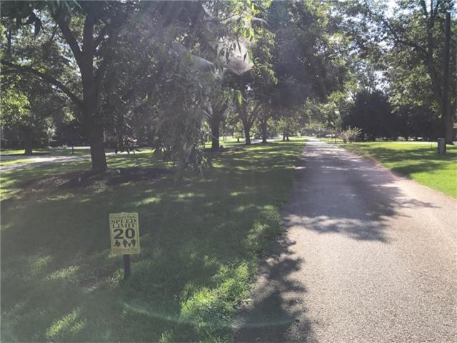 156 Orchard Park Drive, Mcdonough, GA 30253 (MLS #5891767) :: The Bolt Group