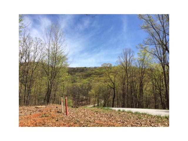 0 Forked Leaf Drive, Cleveland, GA 30528 (MLS #5894505) :: Carr Real Estate Experts