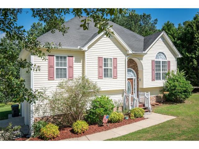 20 Roman Drive, Dallas, GA 30157 (MLS #5897040) :: RE/MAX Prestige
