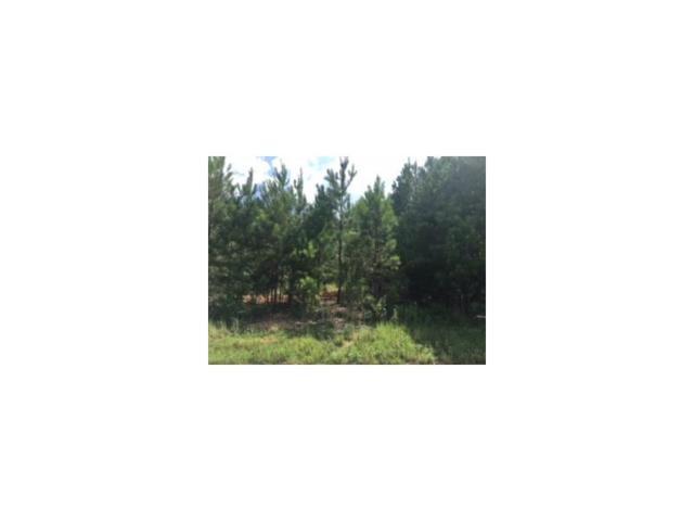 249 Arborview Drive, Mcdonough, GA 30252 (MLS #5902447) :: North Atlanta Home Team
