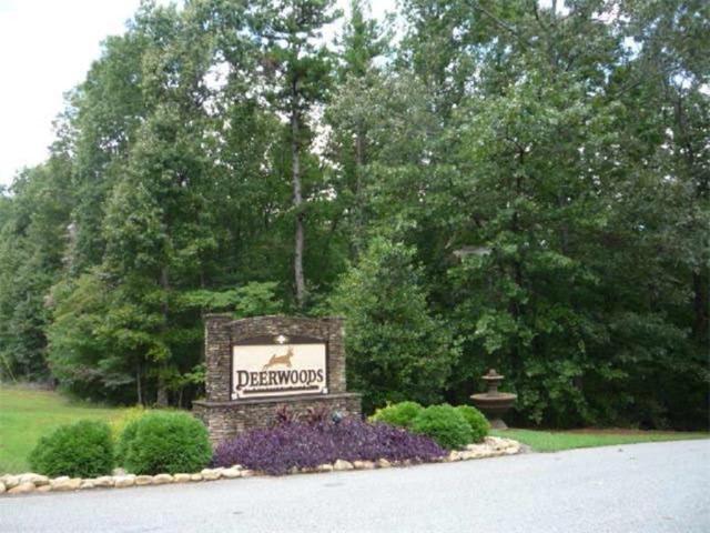 13 White Tail Court, Dahlonega, GA 30533 (MLS #5903294) :: North Atlanta Home Team